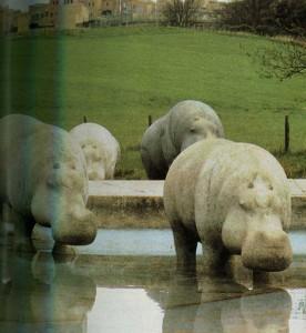 «Бегемоты»в Риверсайдском парке в Гленротесе.