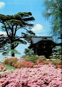 Японские ворота в сад