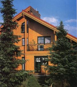 вид дома с односкатной крышей