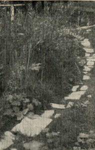 Каменная дорожка