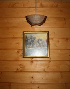 в деревянном интерьере
