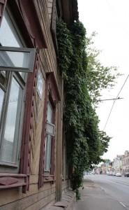 Озеленение зданий
