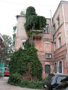 Зелень закрывает балкон