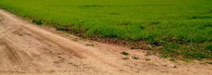 Компенсация за изъятие земельного участка