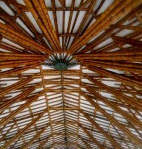 Инновации и бамбук
