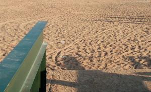 Пляж у пансионата Дюны для Петербуржсцев