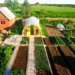 Сельхозперепись дачных участков