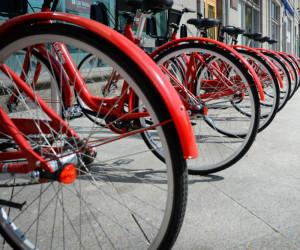 Бесплатный велопрокат