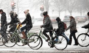 Международный Зимний велоконгресс