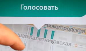 В Москве завершилось голосование по программе \