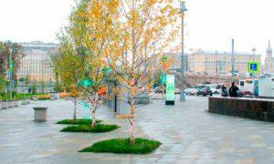 Парк «Зарядье» в Москве