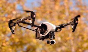 В Подмосковье дроны нашли сотни тысяч