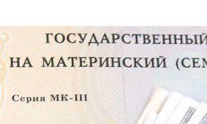 Путин предложил продлить программу маткапитала