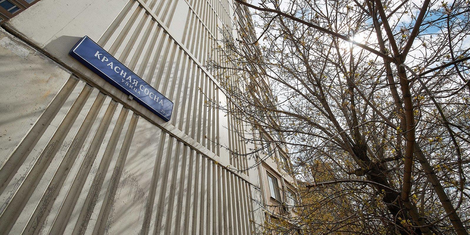 Улица Красная Сосна. Фото: mos.ru. Максим Денисов