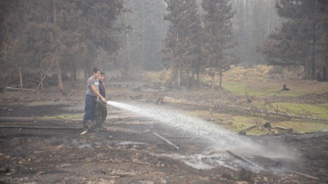 Последствия лесных пожаров в Якутии