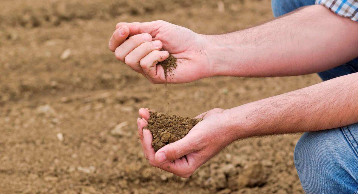 режим-почвы