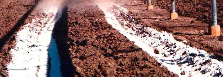 Известкование и гипсование почв